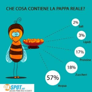 Infografica pappa reale