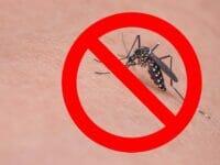 Miglior repellente zanzare